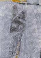 Jan Samec (Malerei)
